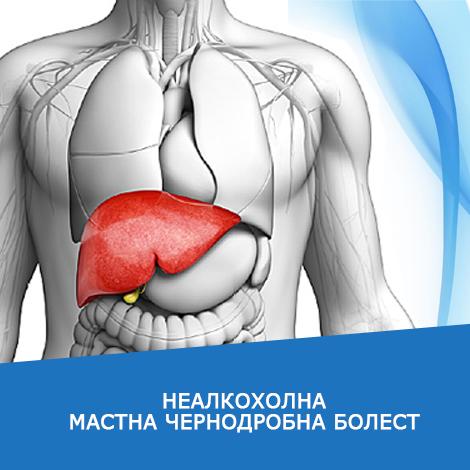 news-liver